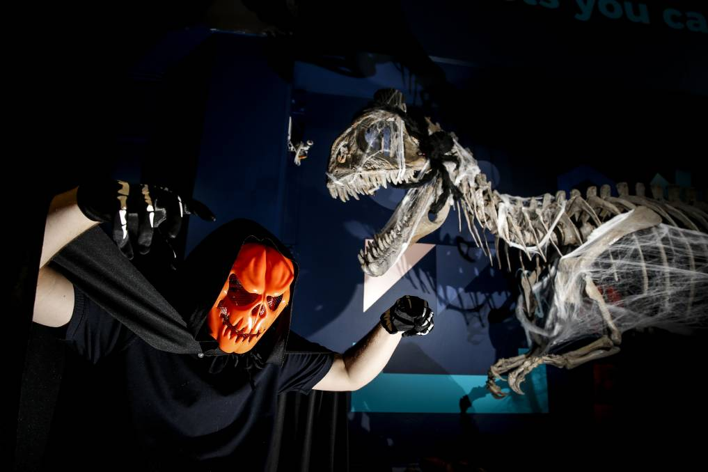 Halloween 2020: Spookfest is going ahead at the Science Space Wollongong on Friday where 225 people will enjoy a night of fun and frights. Picture: Anna Warr.